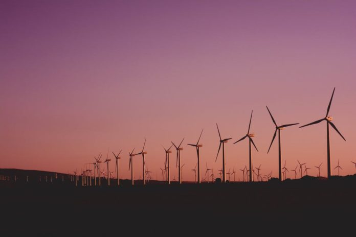 Data to play key role in unlocking renewable energy investment post-pandemic - CL
