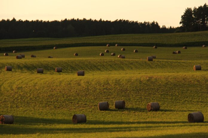 Why data and analytics are critical on the farm